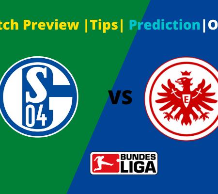 Schalke 04 vs Eintracht Frankfurt: Prediction for Bundesliga goals